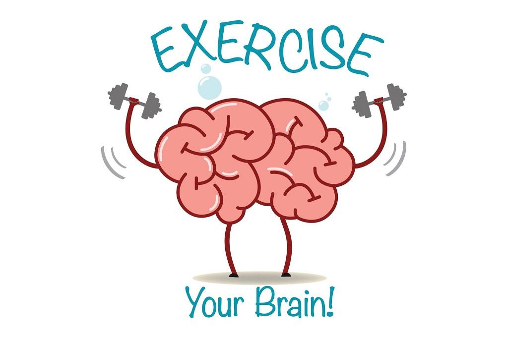 cerebro actividad